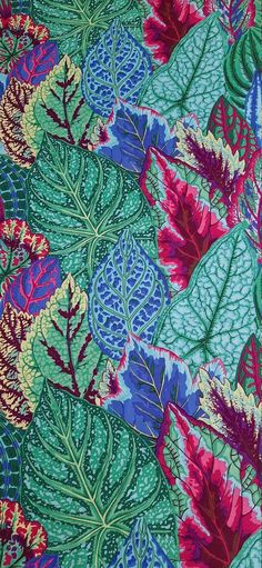 Kaffe Fassett Collective Quilt Fabric Coleus Turquoise 100% Cotton By the yard