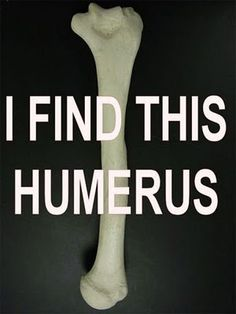At Least We Made it This Far: Puns Puns Puns--And it is humerus!