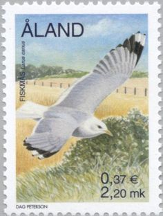 Stamp%3A%20Mew%20Gull%20(Larus%20canus)%20(%C3%85land%20Islands)%20(Birds)%20Mi%3AAX%20169%2CSn%3AAX%2095%2CYt%3AAX%20169%2CAFA%3AAX%20169%20%23colnect%20%23collection%20%23stamps