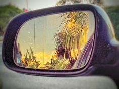 Sometimes future can be seen in a rear view mirror...
