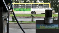No acumulado até novembro passado, foram 325 milhões de litros em um parque industrial de 7,03 bilhões, mostram os dados do Ministério de Minas e Energia