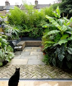 Gorgeous Small Gardens Design Ideas with Cozy Seating is part of Tropical patio - Seating space is a great instance of doubleduty design Whether you are searching for a garden makeover, stunning distinctive garden design Tropical Patio, Tropical Garden Design, Modern Garden Design, Backyard Garden Design, Diy Garden, Contemporary Garden, Rooftop Garden, Garden Cottage, Backyard Landscaping