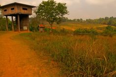 Khao Yai National Park is a national park in Thailand.