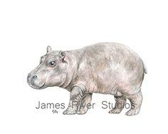 Hippo Art Hippo Painting Hippo Print Hippo by jamesriverstudios