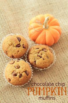 Chocolate chip pumpkin muffins recipe. Perfect for fall. Yum!