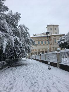 Villa Borghese 26 2 2018