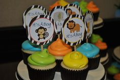 jungle baby shower cupcakes