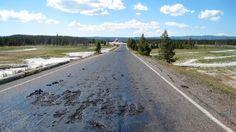 El parque Yellowstone cierra accesos por actividad volcanica
