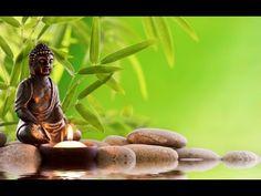 Autogén tréning: Stresszoldás fizikai, lelki, mentális szinten -SEERGA N...