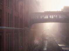 The HighLine NYC by Darran Rees, via Behance