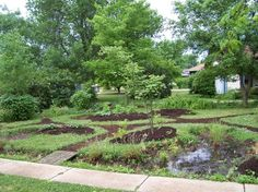 """Front Yard Rain Garden and Berm Midwest Permaculture. Says designer and homeowner: """"It is a priority of ours that if we are going to turn our front yard into a food production area, we also want it to look nice and be inviting for ourselves and our neighbors."""""""
