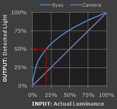 linear vs nonlinear gamma - cameras vs human eyes. http://www.cambridgeincolour.com/tutorials/gamma-correction.htm