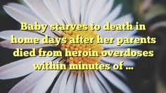 Baby starves to death in home days after her parents died from heroin overdoses within minutes of ... - http://www.facebook.com/415612751918392/posts/1027891987357129