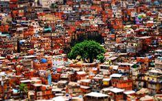 Rocinha, favela, tilt shift, Brazil