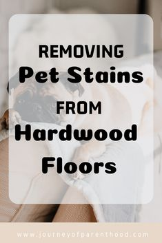 Removing pet stains from hardwood floors: cleaning hardwood floors with pets and getting out pee stains from dogs and cats. Window Cleaning Tips, Deep Cleaning Tips, House Cleaning Tips, Diy Cleaning Products, Spring Cleaning, Cleaning Hacks, Cleaning Solutions, Household Products, Cleaning Recipes