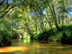 Découverte touristique du Parc naturel régional des Landes de Gascogne Aquitaine