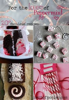 For the Love of Peppermint ~ 20 Fabulous & Amazing Recipes - Nest of Posies. I'm in peppermint heaven!!! YUM!!