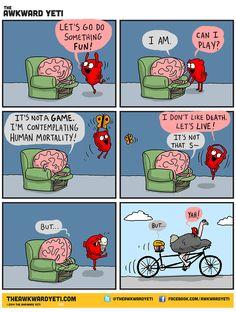 heart wins a round