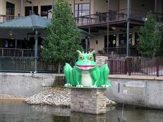 the horney toad at lake of the Ozarks. Love this place. 1 Day Trip, Weekend Trips, Travelling Wilburys, Family Vacations, Lake Life, Toad, Spring Break, St Louis, Missouri