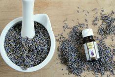 Olejek lawendowy - właściwości i zastosowanie. Lawenda to roślina przyjemnym aromacie oraz wszechstronnym działaniu. Większość osób lubi zapach lawendy. Działa on bowiem relaksująco. Olejek lawendowy o którym dziś mowa, jest doskonałym remedium na bezsenność i stres. Jako jeden z nielicznych olejków eterycznych oprócz olejku z drzewa herbacianego, olejek How To Dry Basil, Detox, Herbs, Herb