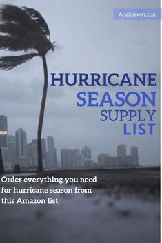 You don't want to worry about tracking down hurricane supplies in the middle of a storm. Use this list to shop online and be ready for hurricane season! Hurricane Preparedness Kit, Disaster Preparedness, Survival Prepping, Survival Hacks, Homestead Survival, Survival Skills, Hurricane Supplies, Skills To Learn, Learning Skills