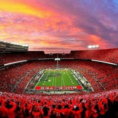 Gene Smith, The Ohio State University Athletics,  National Champions in Multiple Sports, including Football, Wrestling, Pistol, Rowing, Synchronized Swimming,  and Ohio Stadium – #1 in U.S. in Average Football Game Attendance  http://columbusfoundation.org/news-reports/news/celebrating-columbus-national-number-ones