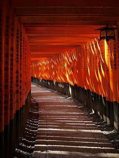Thousand tori gates in Kyoto Places Around The World, Around The Worlds, Beautiful World, Beautiful Places, Japanese Culture, Japanese Art, Japon Tokyo, Japanese Landscape, Art Japonais