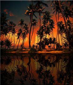 Tropical Paradise     ♥ ♥   www.paintingyouwithwords.com