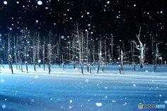 冬にだけ出会える♪日本の絶景・雪景色18選   icotto[イコット] Antoni Gaudi, Winter Scenery, Snow Scenes, Paradise, Japan, Beach, Water, Instagram Posts, Photography