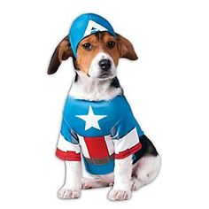 Rubies Costume Co. Marvel™ Captain America Dog Costume. Guaranteed to bring your pup  sc 1 st  Pinterest & 19 best Dog Costumes images on Pinterest   Animal costumes ...