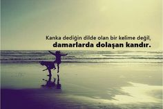 Kankaya Güzel Sözler Best Friends Forever, Beautiful Words, 1, Quotes, Movie Posters, Movies, Quotations, Tone Words, Films