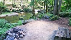 Crabtree Falls Campground Tent Camping, Glamping, Rv Travel Trailers, Thing 1, Trip Planning, Stepping Stones, Virginia, Places To Go, Fall