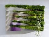Vertical Garden DIY Panel - modern - plants - - by Flora Grubb Gardens