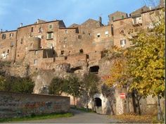 Good Food and Wine and a Little Light Exercise: IN THE HEART OF ETRUSCAN COUNTRY