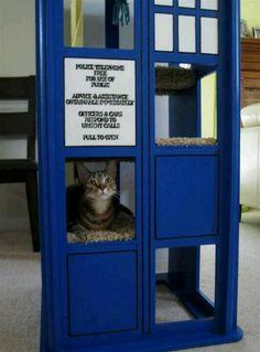 Another TARDIS cat tree