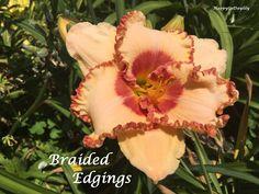 Braided Edgings photo by HappyGoDaylily