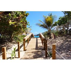 Beach was lit 🙌 Flamenco beach in Culebra island 🌴 . . #exotic ##godisgreat #adventure #godisgood #pr #puertorico #travel #travellife #travelblogger #live #love #palmtrees #oldsanjuan #sanjuan #pr #adventure #fashion #styleblogger #life #culture #cabana #playa #culebra #paradise #islandlife #island #beachislife #sand #travelgram by sannysantos. travelblogger #paradise #puertorico #oldsanjuan #life #pr #sanjuan #sand #live #culebra #beachislife #travelgram #palmtrees #culture #fashion #love…