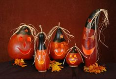Handcrafted Gourds from Vermont Gift Barn for Vermont products, Vermont gifts and Vermont Souvenirs