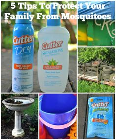 5 Tips To Protect Yourself From Mosquitoes