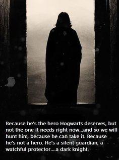 The Dark Knight meets Harry Potter...