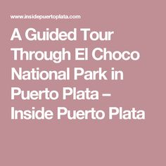 A Guided Tour Through El Choco National Park in Puerto Plata – Inside Puerto Plata
