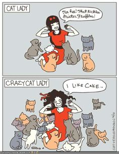 Funny Cat People (12 Pics) So there it is, I'm just a regular cat lady...who happens to like cake.
