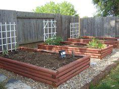 Build a Drip Watering System for Outside Plants Fruit Garden, Edible Garden, Water Garden, Lawn And Garden, Vegetable Garden, Home And Garden, Drip Watering System, Drip System, Organic Gardening