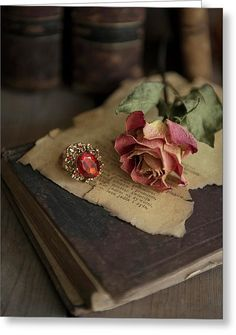 Still Life With Old Books, Dried Rose And Big Ring Greeting Card by Jaroslaw Blaminsky Still Life Photography, Book Photography, Creative Photography, Book Flowers, Dried Flowers, Purple Flowers, Old Books, Vintage Books, Photos Amoureux