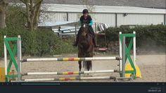 Sierra schooling in Duffys. Jumping 90cms. #loveirishhorses