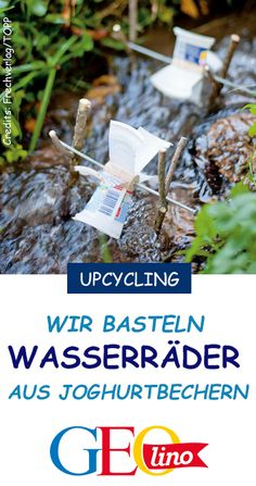 Wasserräder basteln You can build nimble waterwheels from old yogurt cups. We show you GEOLINO.de, h Succulent Pots, Succulents Diy, Jewelry Organizer Drawer, Small Flower Pots, Fruit Packaging, States Of Matter, Yogurt Cups, Toilet Paper Roll, Small Gardens