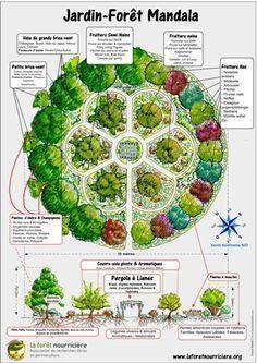 Nourriciere Jardins Forets Carte Foret Des La De Lala