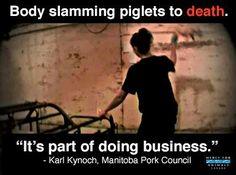 Ari Solomon: This Little Piggy Got Slammed Against Concrete