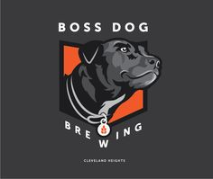The clientvisited Go Media looking for a Cleveland design firm who could help bring their dream brewery to life. Their concept revolved around the name Boss Dog brewery—Discovering how best to visualize the brand's voice, aesthetic, and most literally how… Continue Reading»