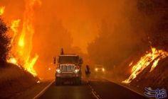 رجال الإطفاء يكافحون حرائق غابات واسعة النطاق فى كاليفورنيا: رجال الإطفاء يكافحون حرائق غابات واسعة النطاق فى كاليفورنيا